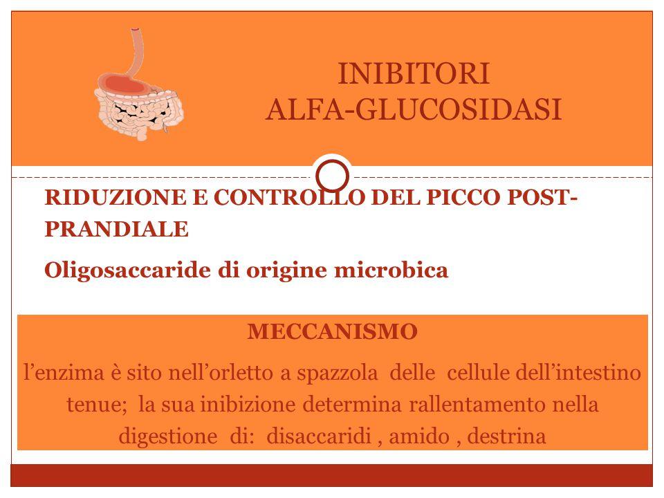 RIDUZIONE E CONTROLLO DEL PICCO POST- PRANDIALE Oligosaccaride di origine microbica INIBITORI ALFA-GLUCOSIDASI MECCANISMO l'enzima è sito nell'orletto a spazzola delle cellule dell'intestino tenue; la sua inibizione determina rallentamento nella digestione di: disaccaridi, amido, destrina