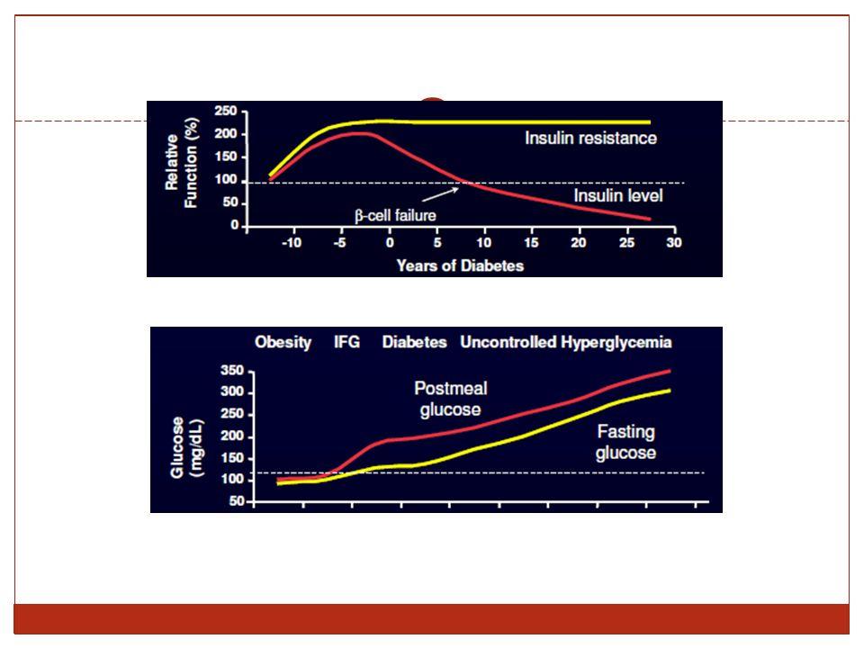 Monoterapia quando metformina non tollerata o controindicata soprattutto se paziente in sovrappeso Terapia duplice combinata Metformina Solfanilurea Terapia triplice combinata Metformina + solfanilurea TIAZOLIDINEDIONI PIOGLITAZONE cpr 15-30 mg ROSILITAZONE cpr 4-8 mg