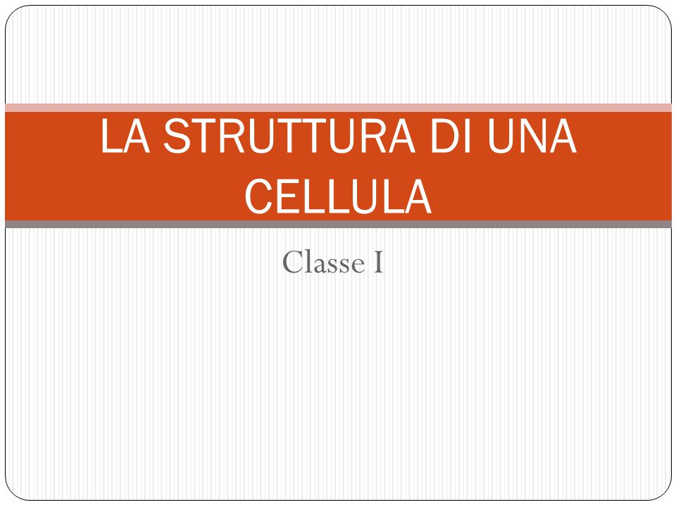 Classe I LA STRUTTURA DI UNA CELLULA