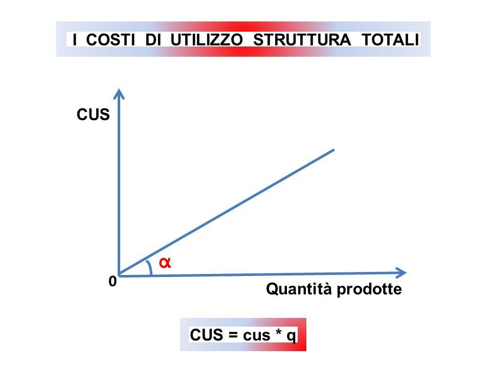α CUS Quantità prodotte 0 CUS = cus * q I COSTI DI UTILIZZO STRUTTURA TOTALI