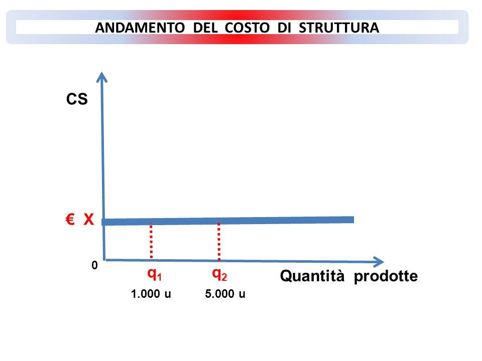 Quantità prodotte 0 q 1 q 2 1.000 u 5.000 u € X CS ANDAMENTO DEL COSTO DI STRUTTURA