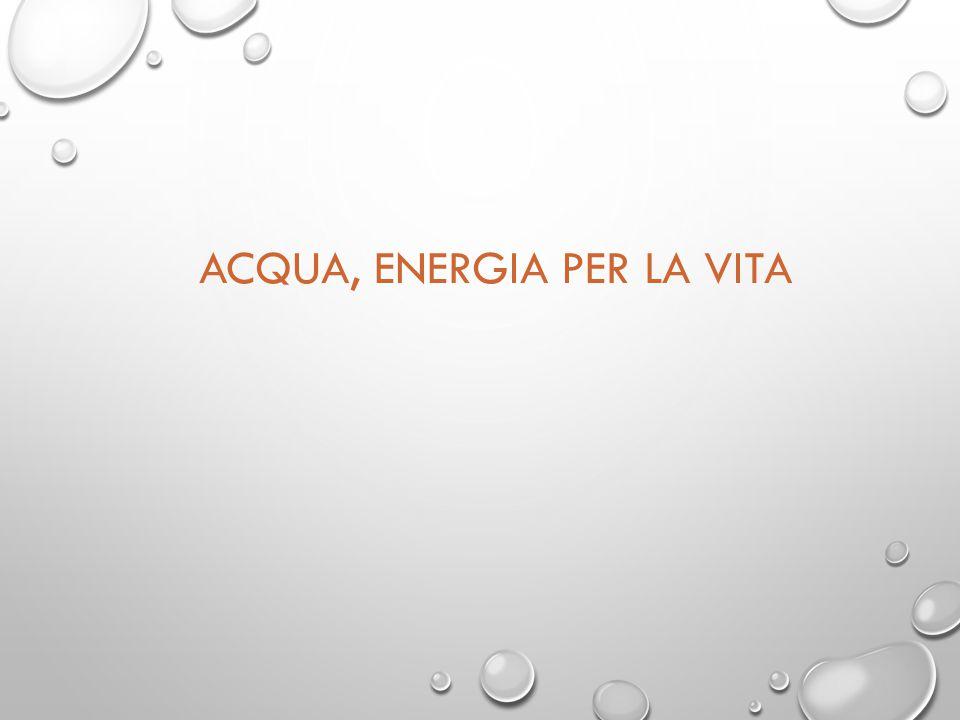 ACQUA, ENERGIA PER LA VITA