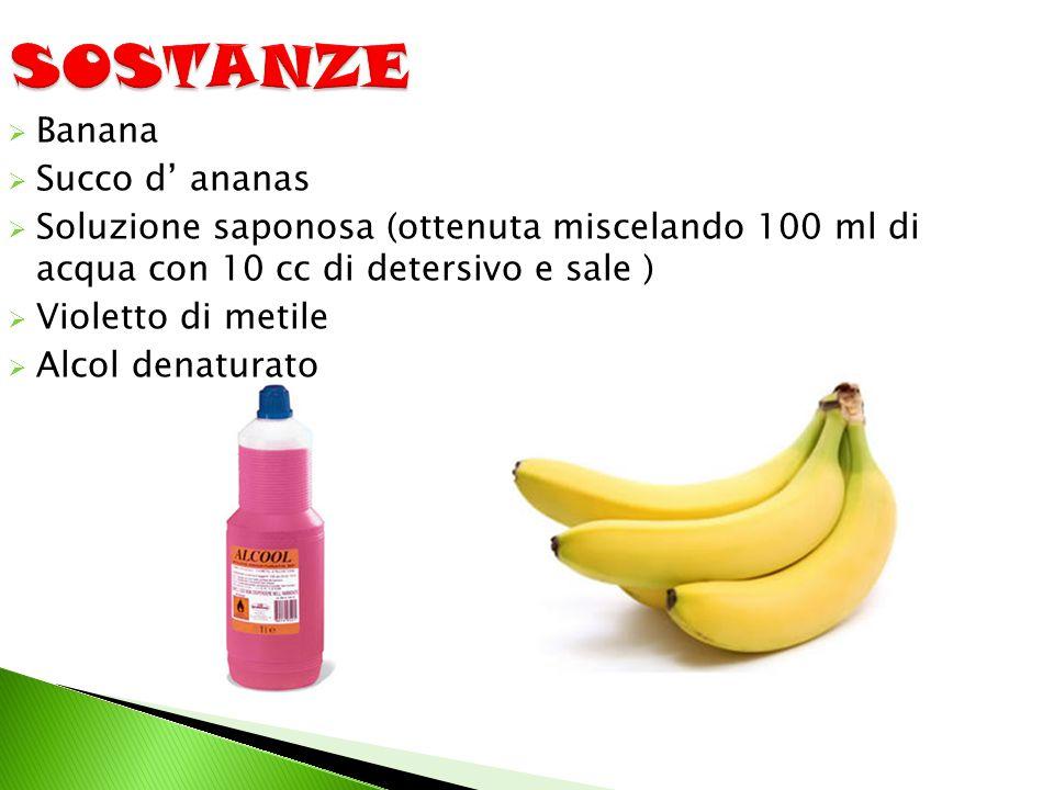  Banana  Succo d' ananas  Soluzione saponosa (ottenuta miscelando 100 ml di acqua con 10 cc di detersivo e sale )  Violetto di metile  Alcol dena