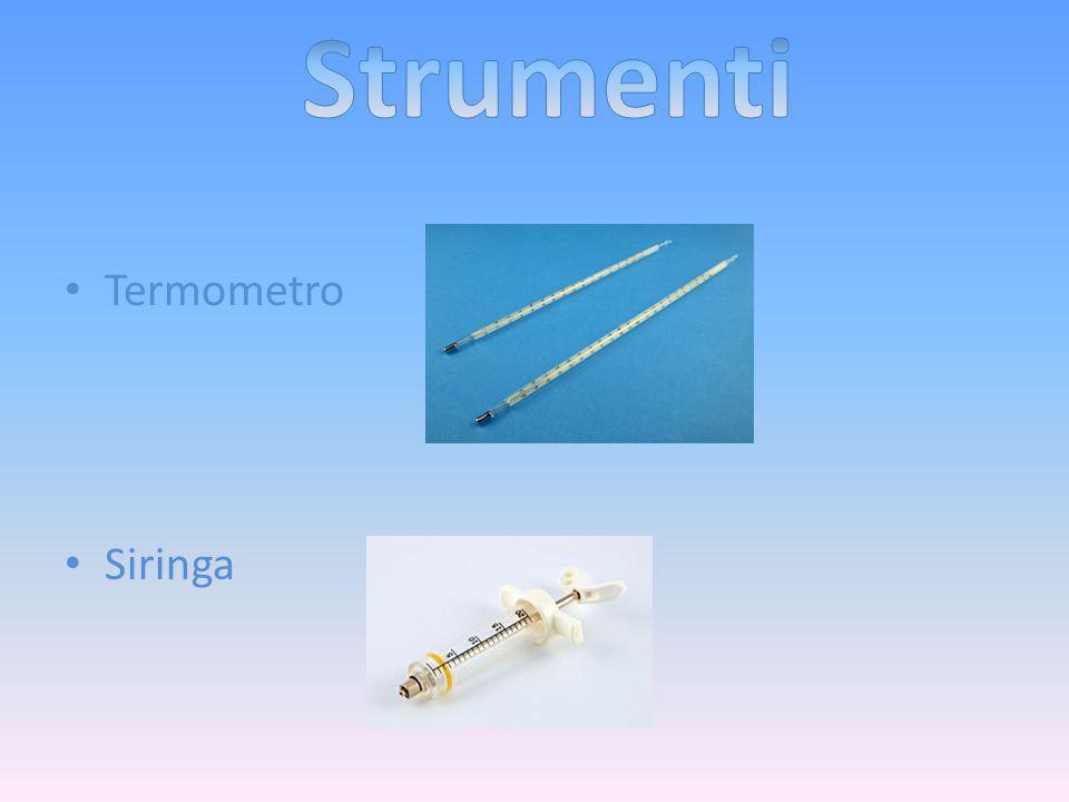 Termometro Siringa