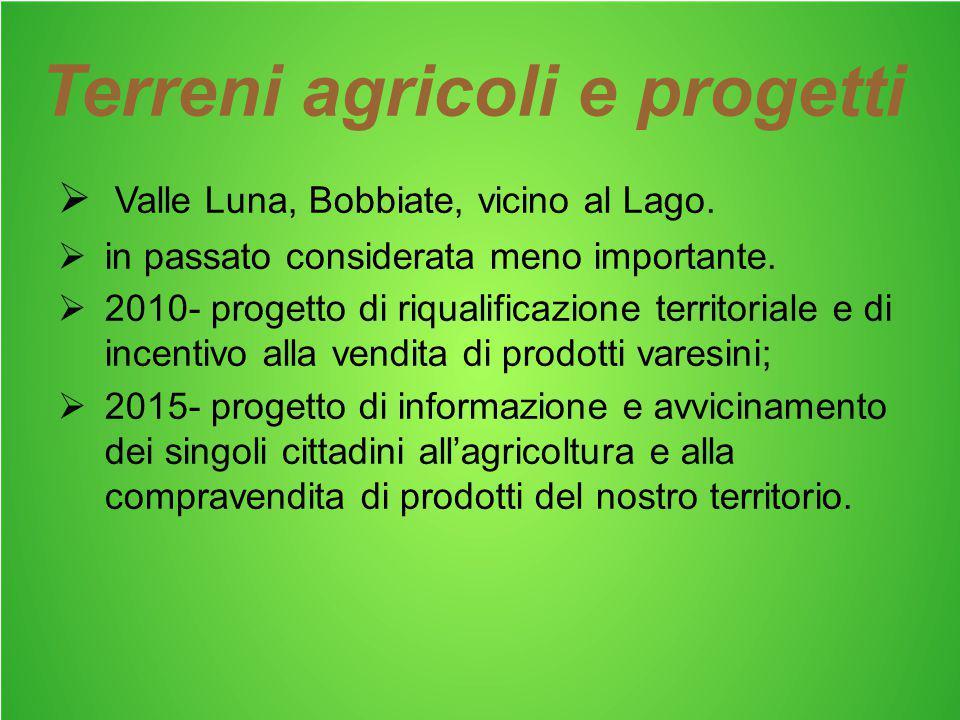 Terreni agricoli e progetti  Valle Luna, Bobbiate, vicino al Lago.