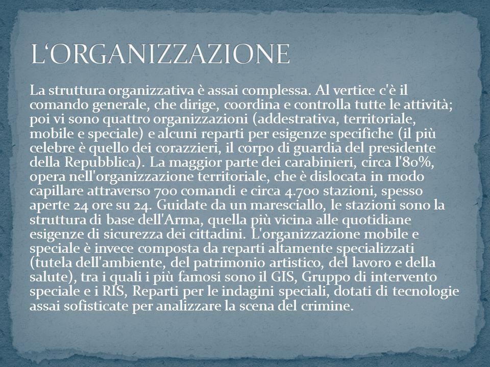 La struttura organizzativa è assai complessa.