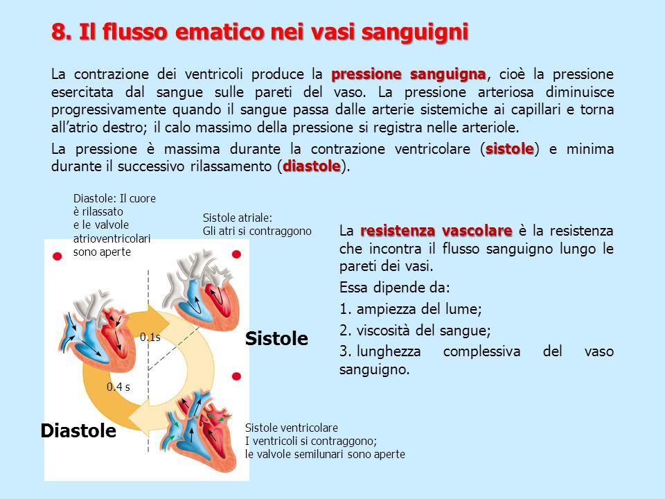 8. Il flusso ematico nei vasi sanguigni pressione sanguigna La contrazione dei ventricoli produce la pressione sanguigna, cioè la pressione esercitata