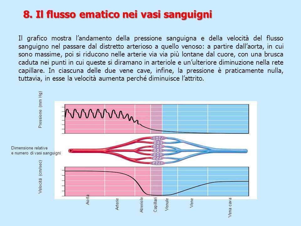 Pressione (mm Hg) Dimensione relative e numero di vasi sanguigni Velocità (cm/sec) Aorta Arterie Atreriole Capillari Venule Vena cava Vene Il grafico