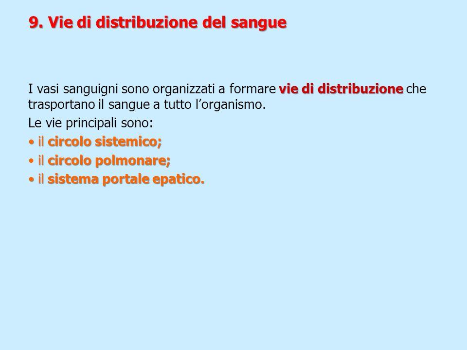 9. Vie di distribuzione del sangue vie di distribuzione I vasi sanguigni sono organizzati a formare vie di distribuzione che trasportano il sangue a t