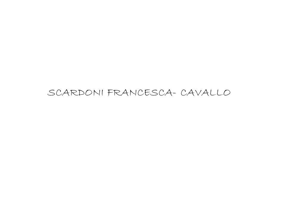 SCARDONI FRANCESCA- CAVALLO
