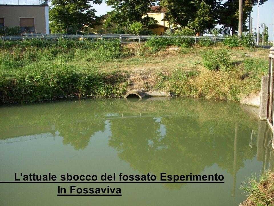 L'attuale sbocco del fossato Esperimento In Fossaviva