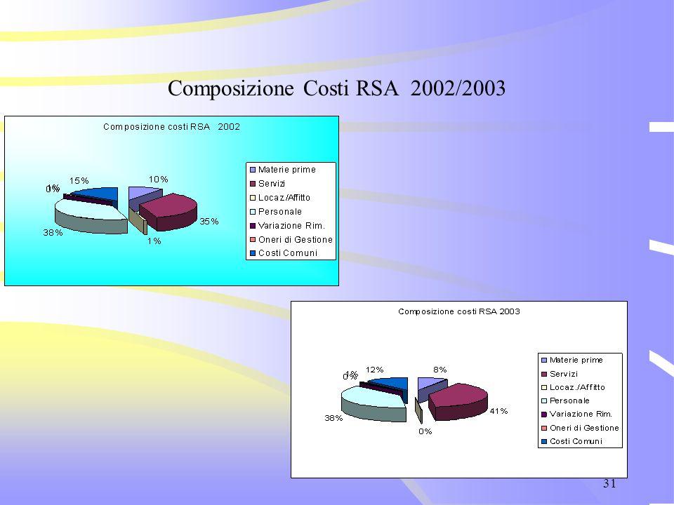 31 Composizione Costi RSA 2002/2003