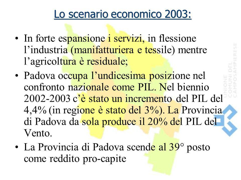 Lo scenario economico 2003: In forte espansione i servizi, in flessione l'industria (manifatturiera e tessile) mentre l'agricoltura è residuale; Padov