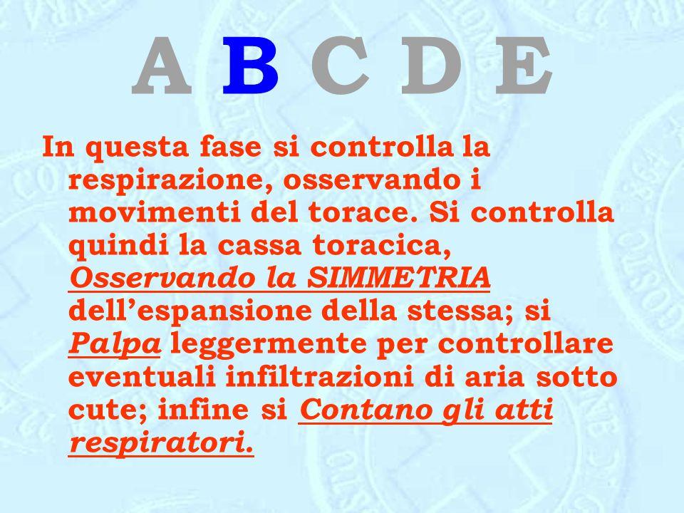 A B C D E In questa fase si controlla la respirazione, osservando i movimenti del torace. Si controlla quindi la cassa toracica, Osservando la SIMMETR