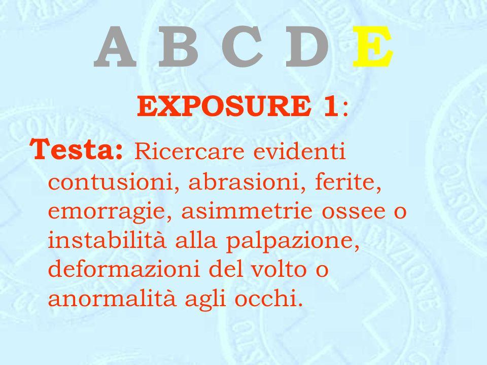 A B C D E EXPOSURE 1 : Testa: Ricercare evidenti contusioni, abrasioni, ferite, emorragie, asimmetrie ossee o instabilità alla palpazione, deformazion