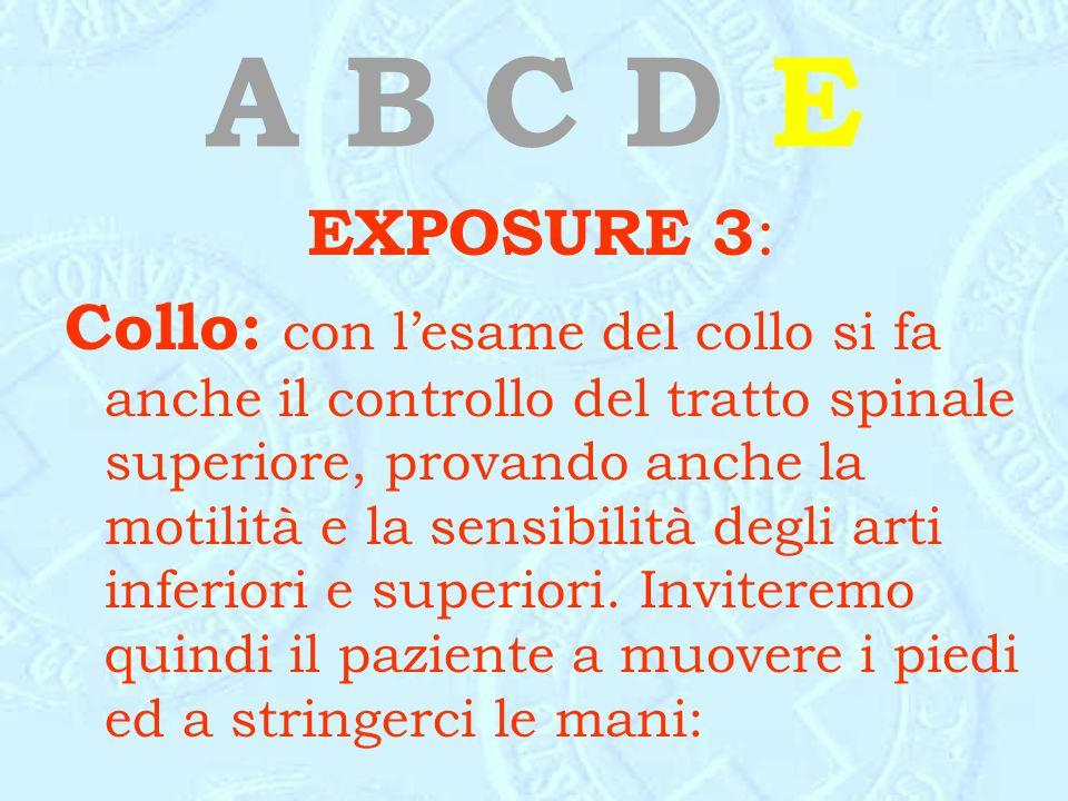 A B C D E EXPOSURE 3 : Collo: con l'esame del collo si fa anche il controllo del tratto spinale superiore, provando anche la motilità e la sensibilità