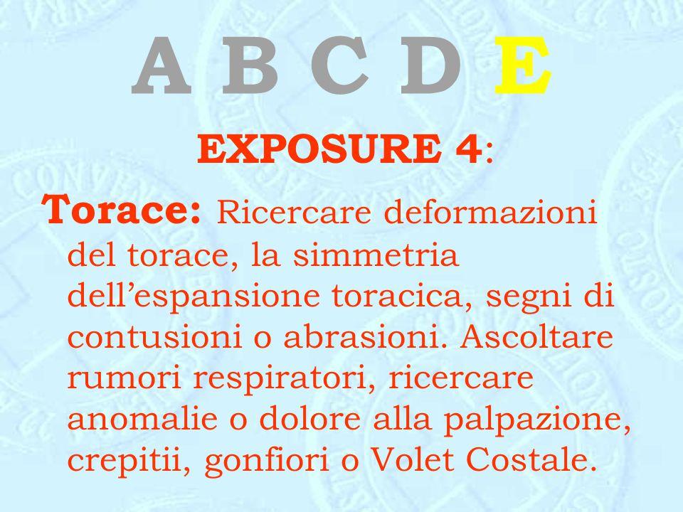 A B C D E EXPOSURE 4 : Torace: Ricercare deformazioni del torace, la simmetria dell'espansione toracica, segni di contusioni o abrasioni. Ascoltare ru