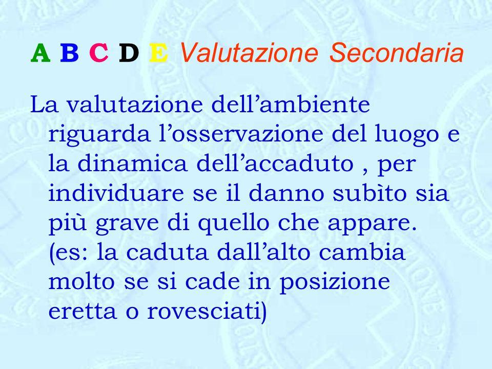 A B C D E Valutazione Secondaria La valutazione dell'ambiente riguarda l'osservazione del luogo e la dinamica dell'accaduto, per individuare se il dan