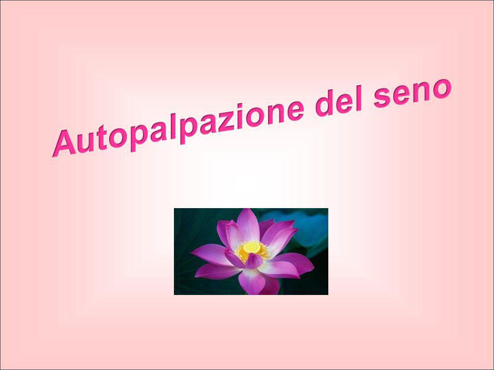 l'autoesame del seno è… …fondamentale per la prevenzione dei tumori della mammella, anche perchè il tumore può essere scoperto nelle fasi iniziali