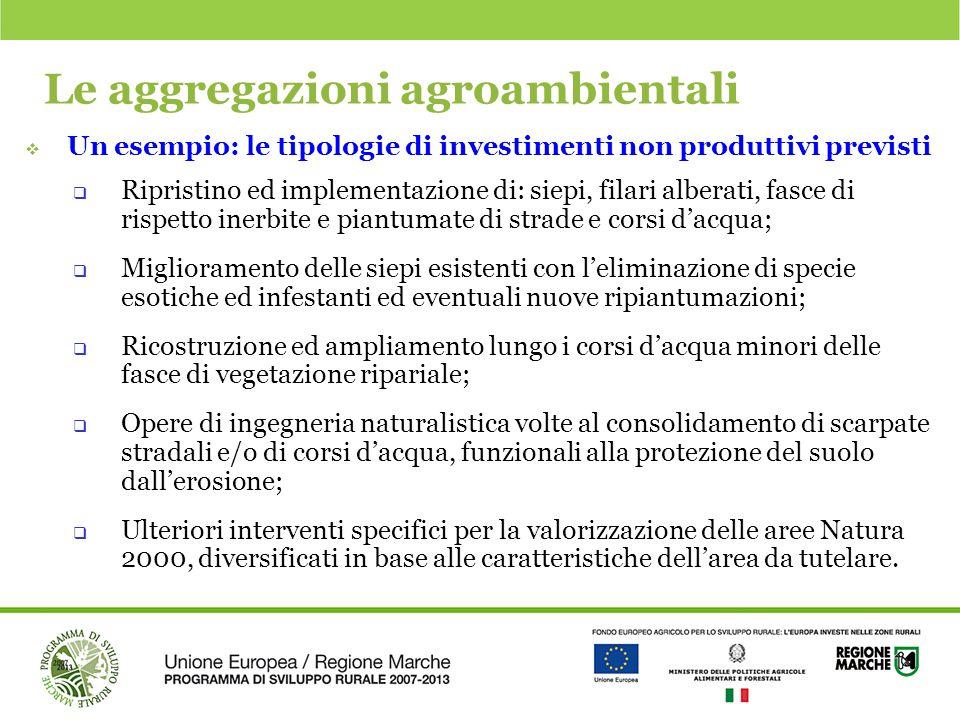 Le aggregazioni agroambientali  Un esempio: le tipologie di investimenti non produttivi previsti  Ripristino ed implementazione di: siepi, filari al