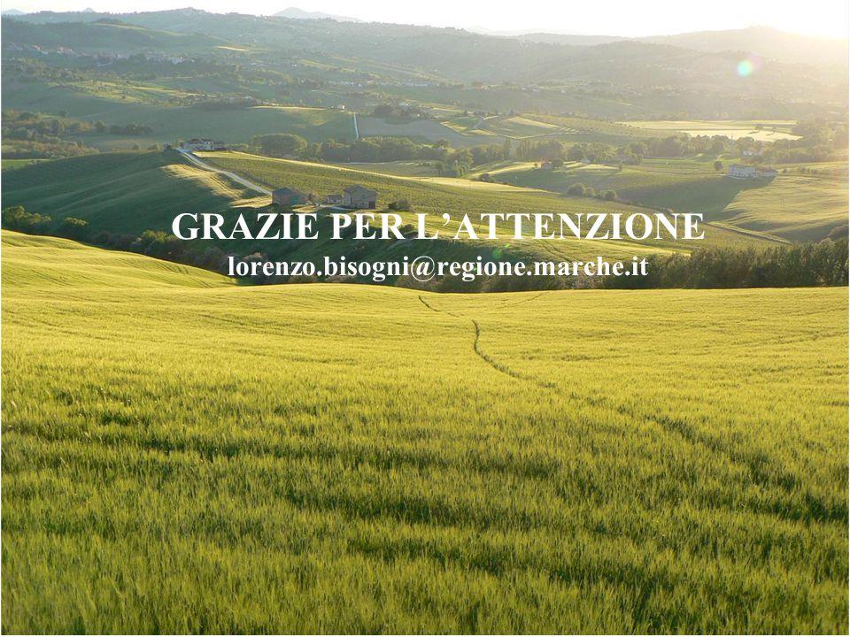 GRAZIE PER L'ATTENZIONE lorenzo.bisogni@regione.marche.it