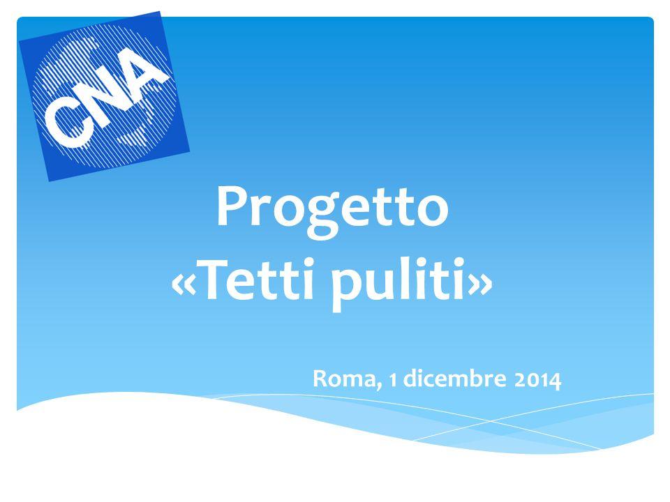 Progetto «Tetti puliti» Roma, 1 dicembre 2014