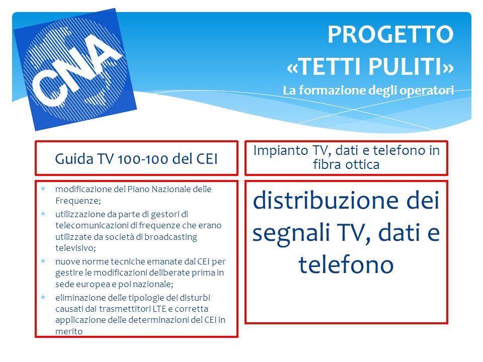 PROGETTO «TETTI PULITI» La formazione degli operatori Guida TV 100-100 del CEI  modificazione del Piano Nazionale delle Frequenze;  utilizzazione da