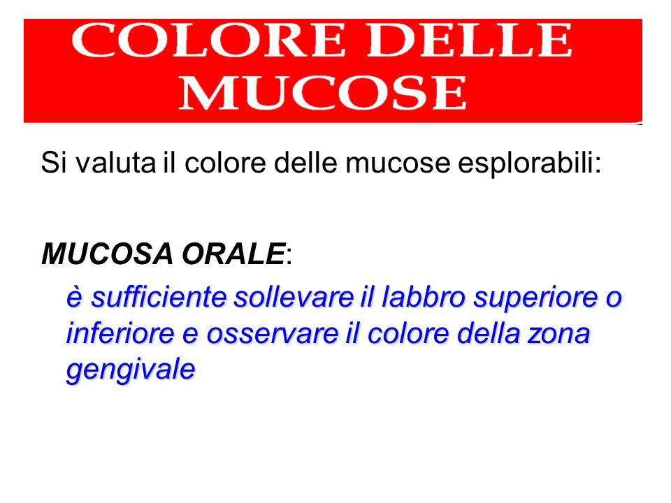 Si valuta il colore delle mucose esplorabili: MUCOSA ORALE: è sufficiente sollevare il labbro superiore o inferiore e osservare il colore della zona g