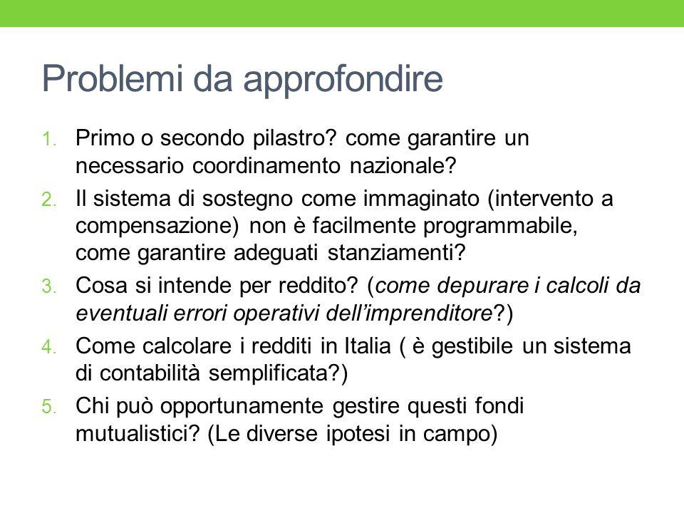 Problemi da approfondire 1. Primo o secondo pilastro? come garantire un necessario coordinamento nazionale? 2. Il sistema di sostegno come immaginato