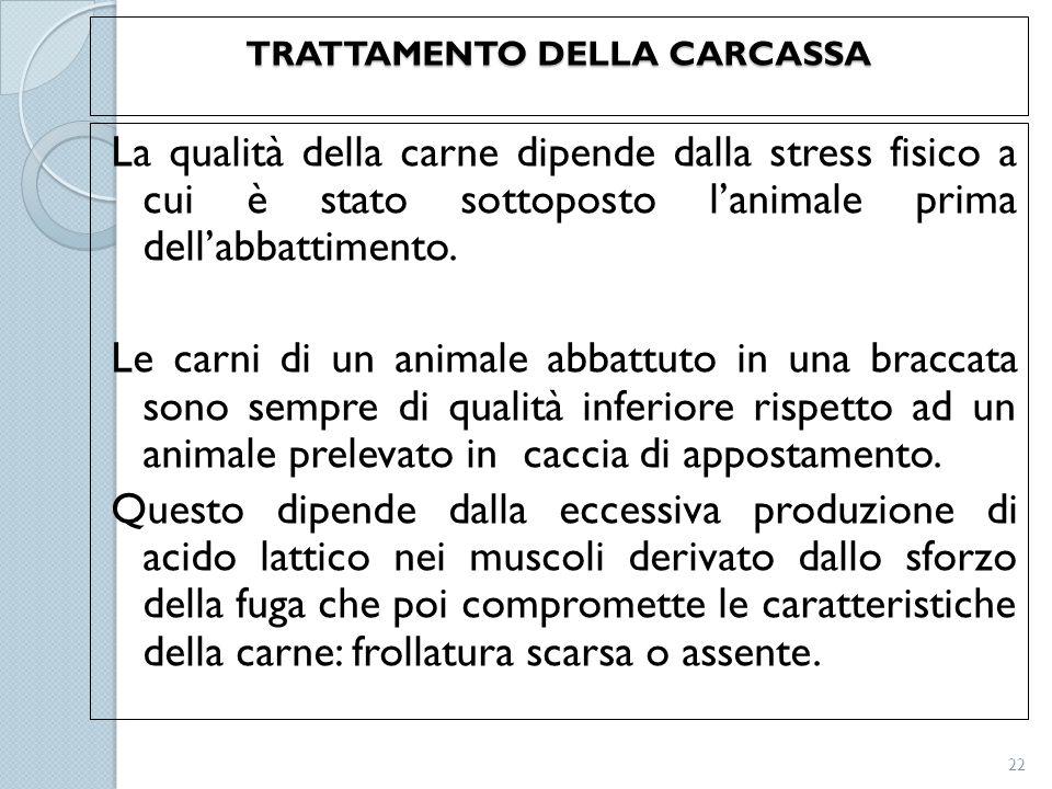 TRATTAMENTO DELLA CARCASSA La qualità della carne dipende dalla stress fisico a cui è stato sottoposto l'animale prima dell'abbattimento. Le carni di