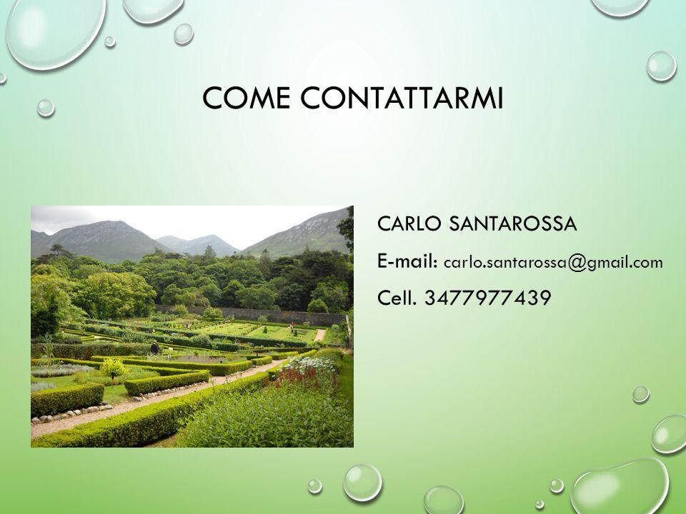 COME CONTATTARMI CARLO SANTAROSSA E-mail: carlo.santarossa@gmail.com Cell. 3477977439