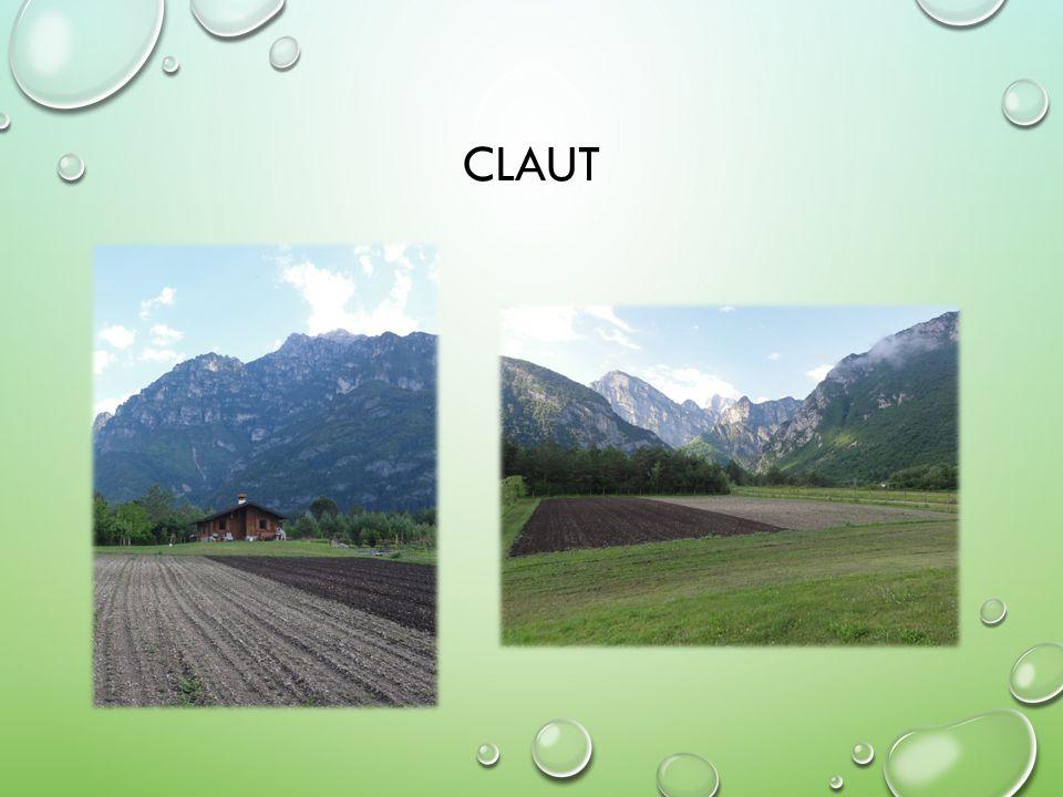CLAUT