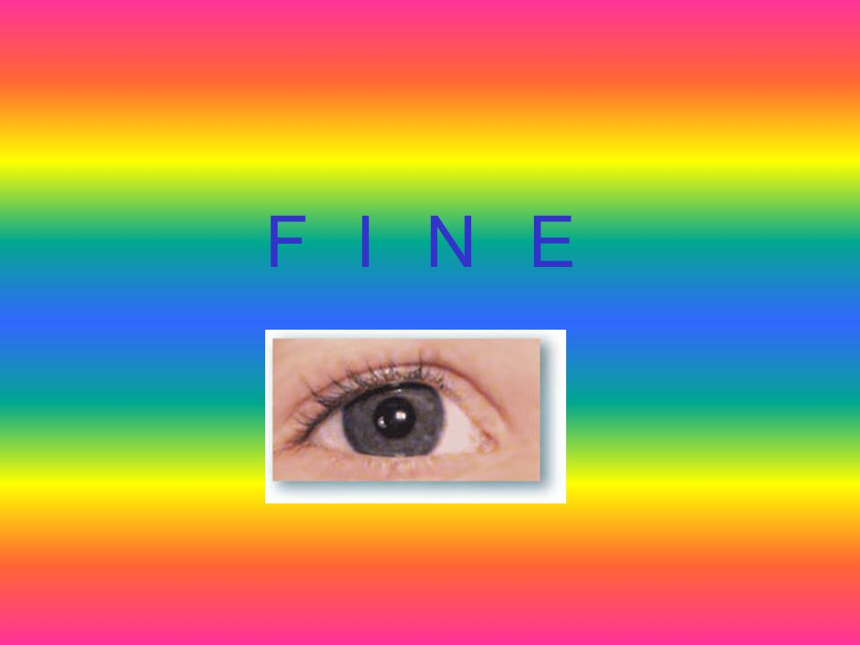 La retina Anatomia Fisiologia La retina è un tessuto nervoso contenuto all'interno dell'occhio, una sottile membrana di colore rosso-arancio. L'immagi