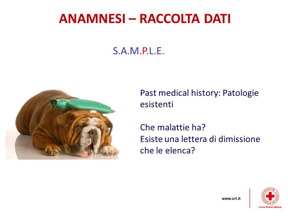 ANAMNESI – RACCOLTA DATI S.A.M.P.L.E. Past medical history: Patologie esistenti Che malattie ha? Esiste una lettera di dimissione che le elenca?