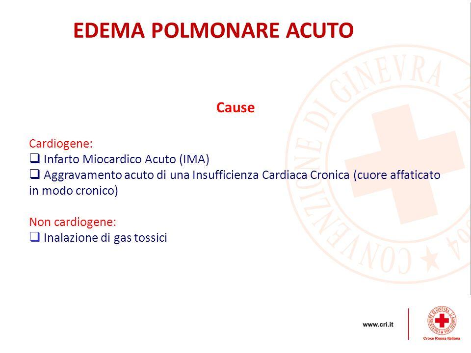 Cause Cardiogene:  Infarto Miocardico Acuto (IMA)  Aggravamento acuto di una Insufficienza Cardiaca Cronica (cuore affaticato in modo cronico) Non c