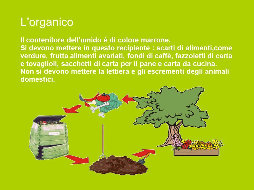 L'organico Il contenitore dell'umido è di colore marrone. Si devono mettere in questo recipiente : scarti di alimenti,come verdure, frutta alimenti av