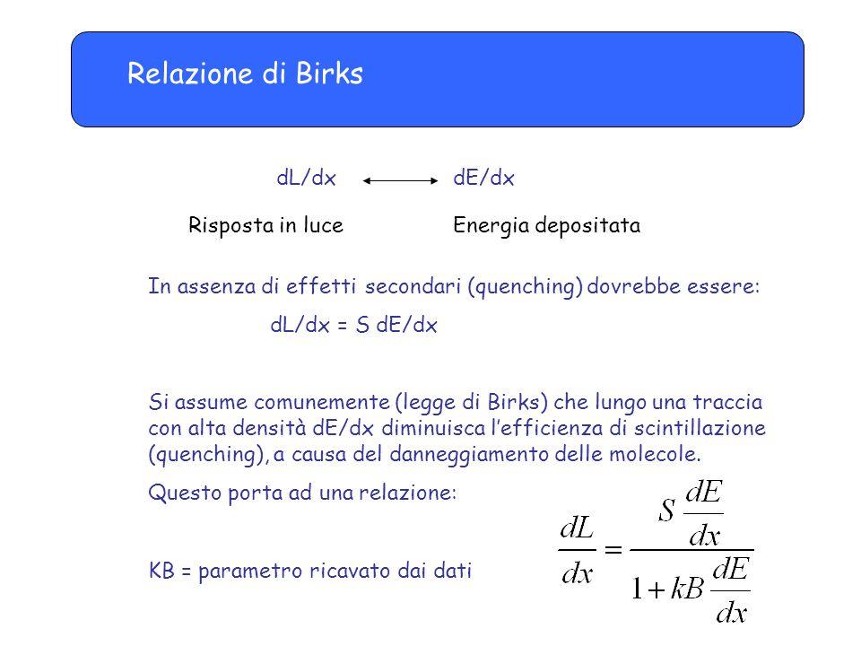 Relazione di Birks dL/dx dE/dx Risposta in luceEnergia depositata In assenza di effetti secondari (quenching) dovrebbe essere: dL/dx = S dE/dx Si assume comunemente (legge di Birks) che lungo una traccia con alta densità dE/dx diminuisca l'efficienza di scintillazione (quenching), a causa del danneggiamento delle molecole.
