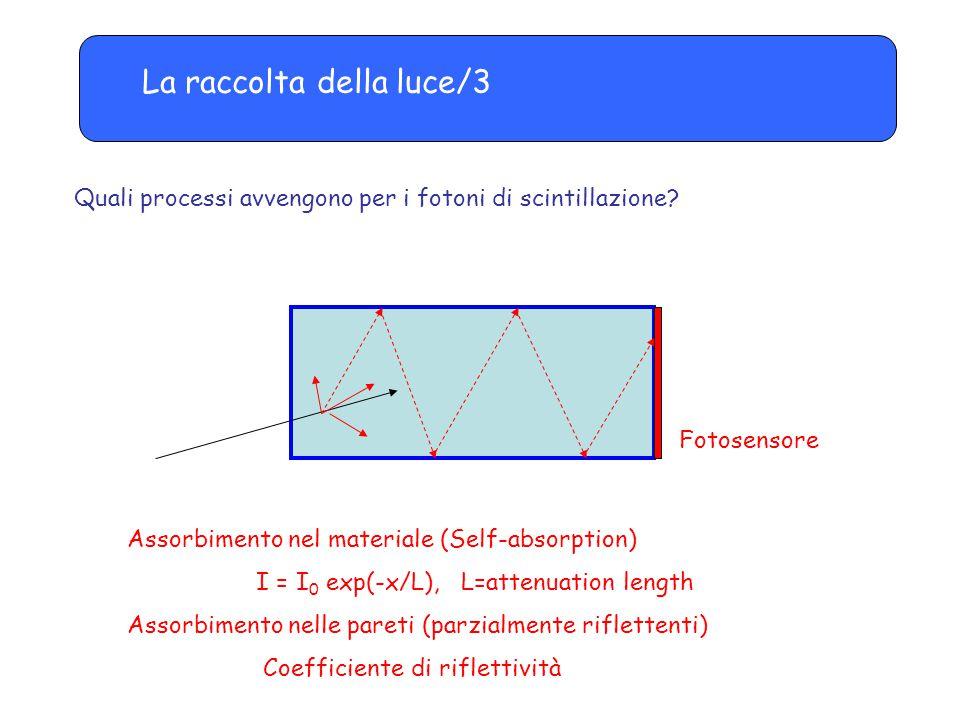 La raccolta della luce/3 Quali processi avvengono per i fotoni di scintillazione? Fotosensore Assorbimento nel materiale (Self-absorption) I = I 0 exp