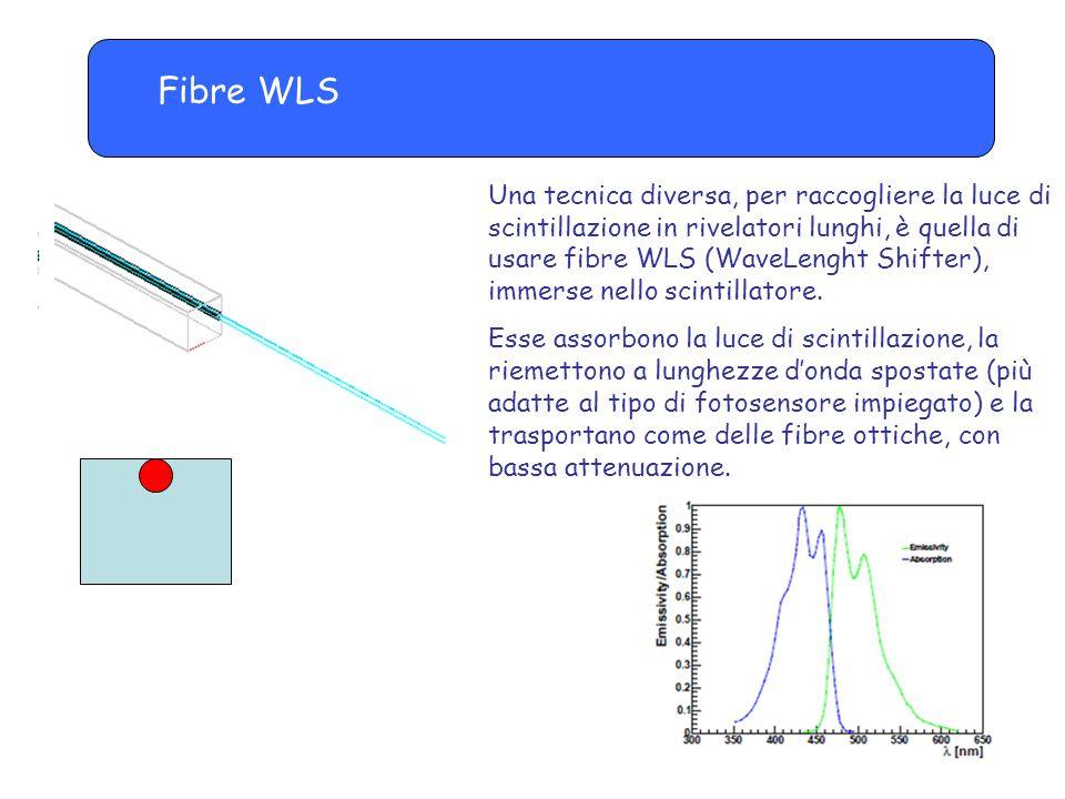 Fibre WLS Una tecnica diversa, per raccogliere la luce di scintillazione in rivelatori lunghi, è quella di usare fibre WLS (WaveLenght Shifter), immerse nello scintillatore.