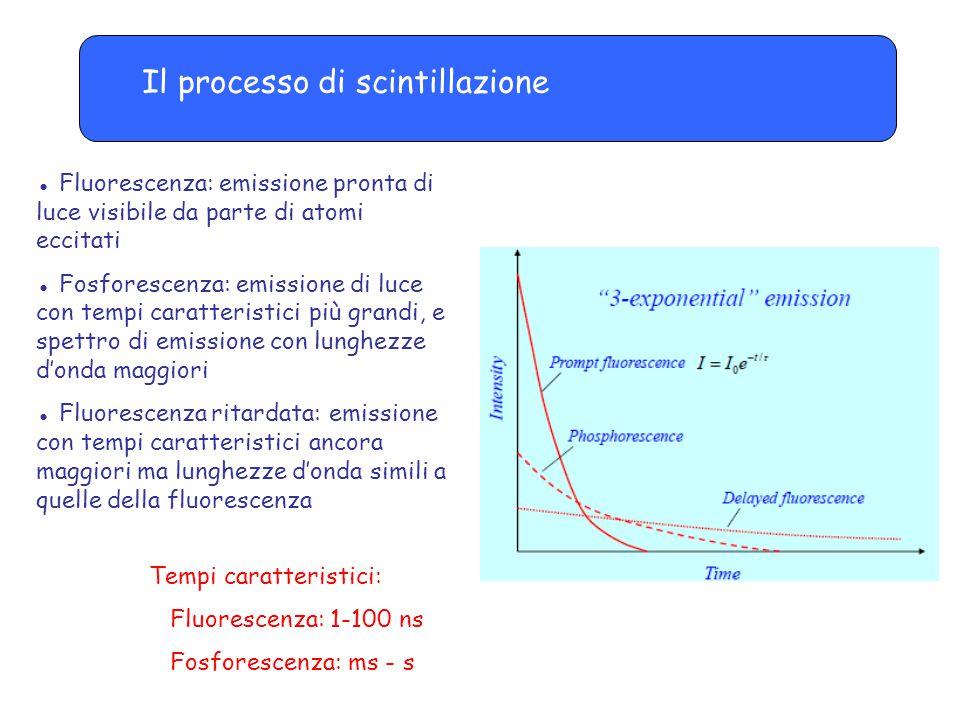 Il processo di scintillazione ● Fluorescenza: emissione pronta di luce visibile da parte di atomi eccitati ● Fosforescenza: emissione di luce con tempi caratteristici più grandi, e spettro di emissione con lunghezze d'onda maggiori ● Fluorescenza ritardata: emissione con tempi caratteristici ancora maggiori ma lunghezze d'onda simili a quelle della fluorescenza Tempi caratteristici: Fluorescenza: 1-100 ns Fosforescenza: ms - s