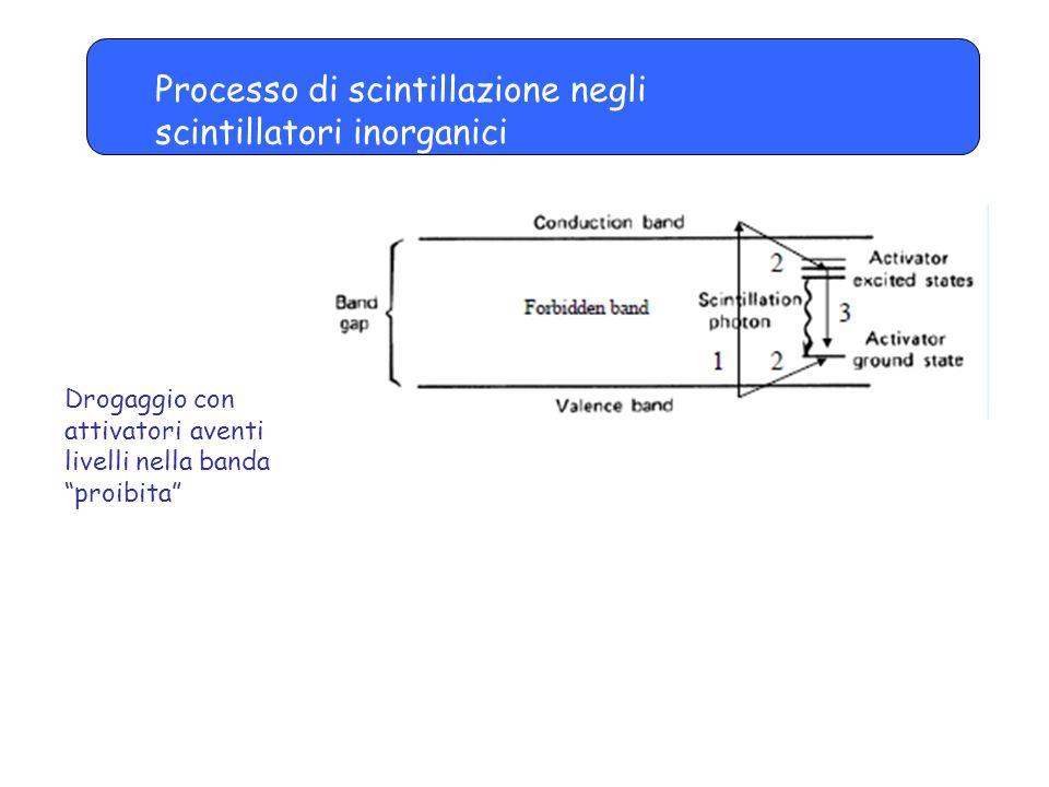Processo di scintillazione negli scintillatori inorganici Drogaggio con attivatori aventi livelli nella banda proibita