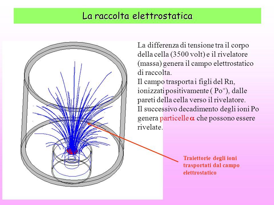 La raccolta elettrostatica Traiettorie degli ioni trasportati dal campo elettrostatico La differenza di tensione tra il corpo della cella (3500 volt)