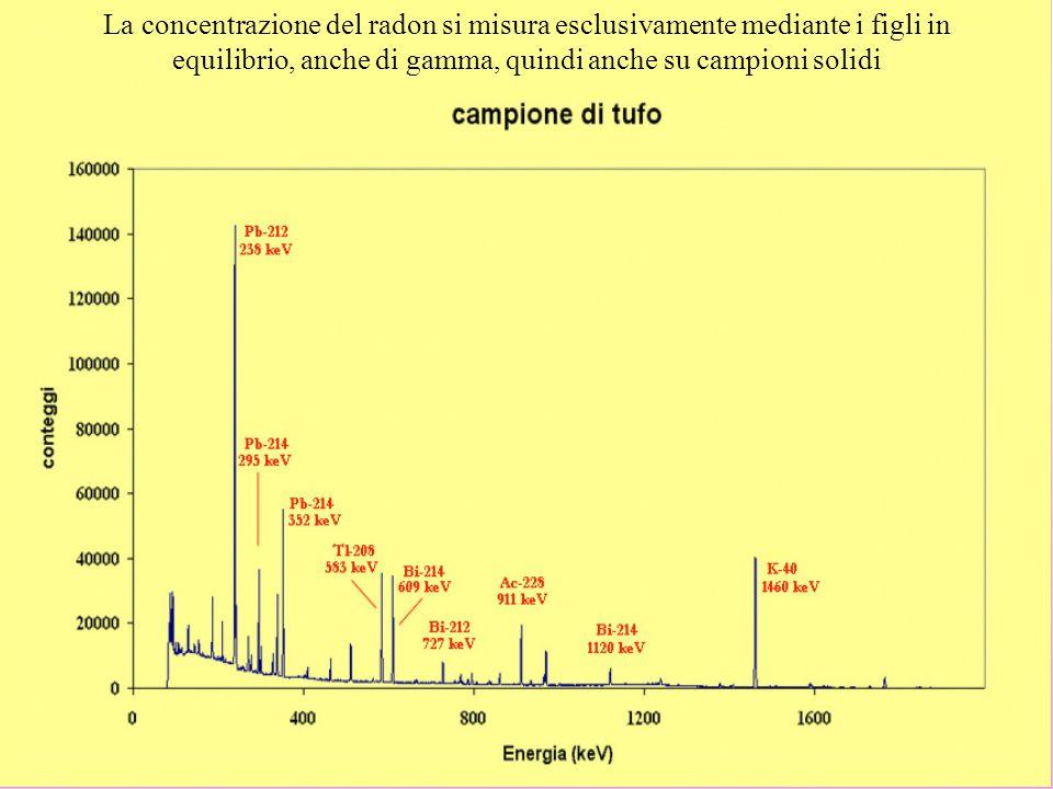 La concentrazione del radon si misura esclusivamente mediante i figli in equilibrio, anche di gamma, quindi anche su campioni solidi