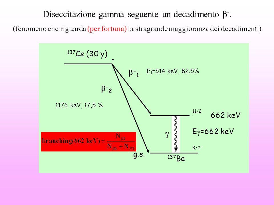 Schema di decadimento del 137 Cs e definizione del gamma branching ratio -1-1 g.s. 662 keV 11/2 - E  =662 keV 137 Cs (30 y) 137 Ba E 1 =514 keV, 82