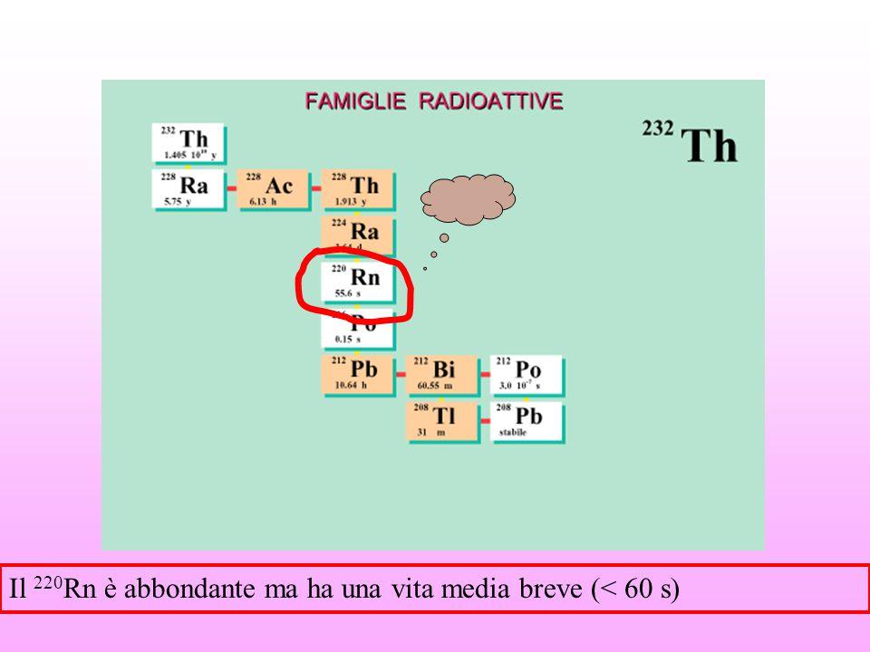Una sorgente di radon in aria deve essere confinata e quindi messa in condizione che si raggiunga nel volume di confinamento l'equilibrio radioattivo La camera radon