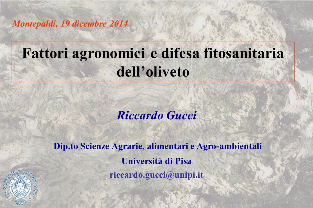 Fattori agronomici e difesa fitosanitaria dell'oliveto Riccardo Gucci Dip.to Scienze Agrarie, alimentari e Agro-ambientali Università di Pisa riccardo
