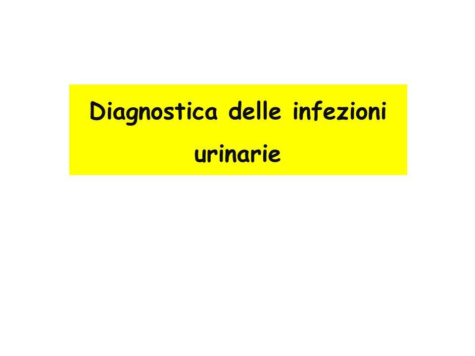 Diagnostica delle infezioni urinarie
