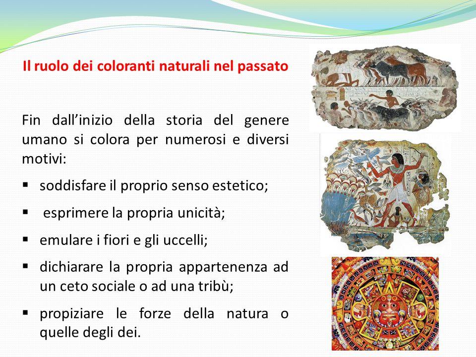 Il ruolo dei coloranti naturali nel passato Fin dall'inizio della storia del genere umano si colora per numerosi e diversi motivi:  soddisfare il pro