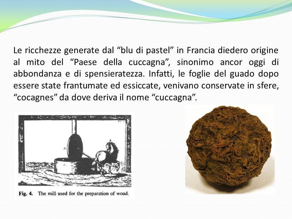 Le ricchezze generate dal blu di pastel in Francia diedero origine al mito del Paese della cuccagna , sinonimo ancor oggi di abbondanza e di spensieratezza.