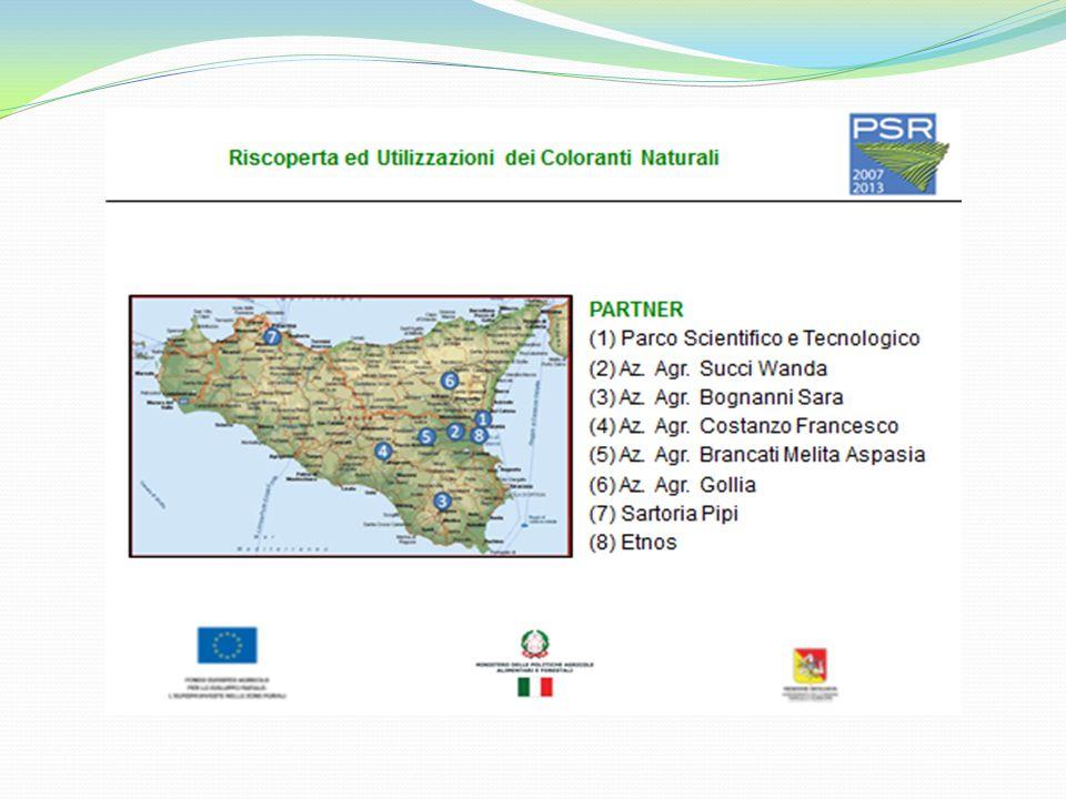 Le piante tintorie in Italia